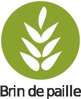 BDP - Logo 2011