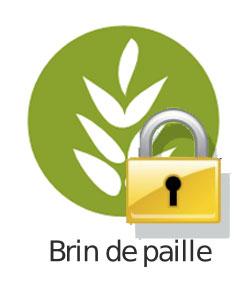 bdp-cadena