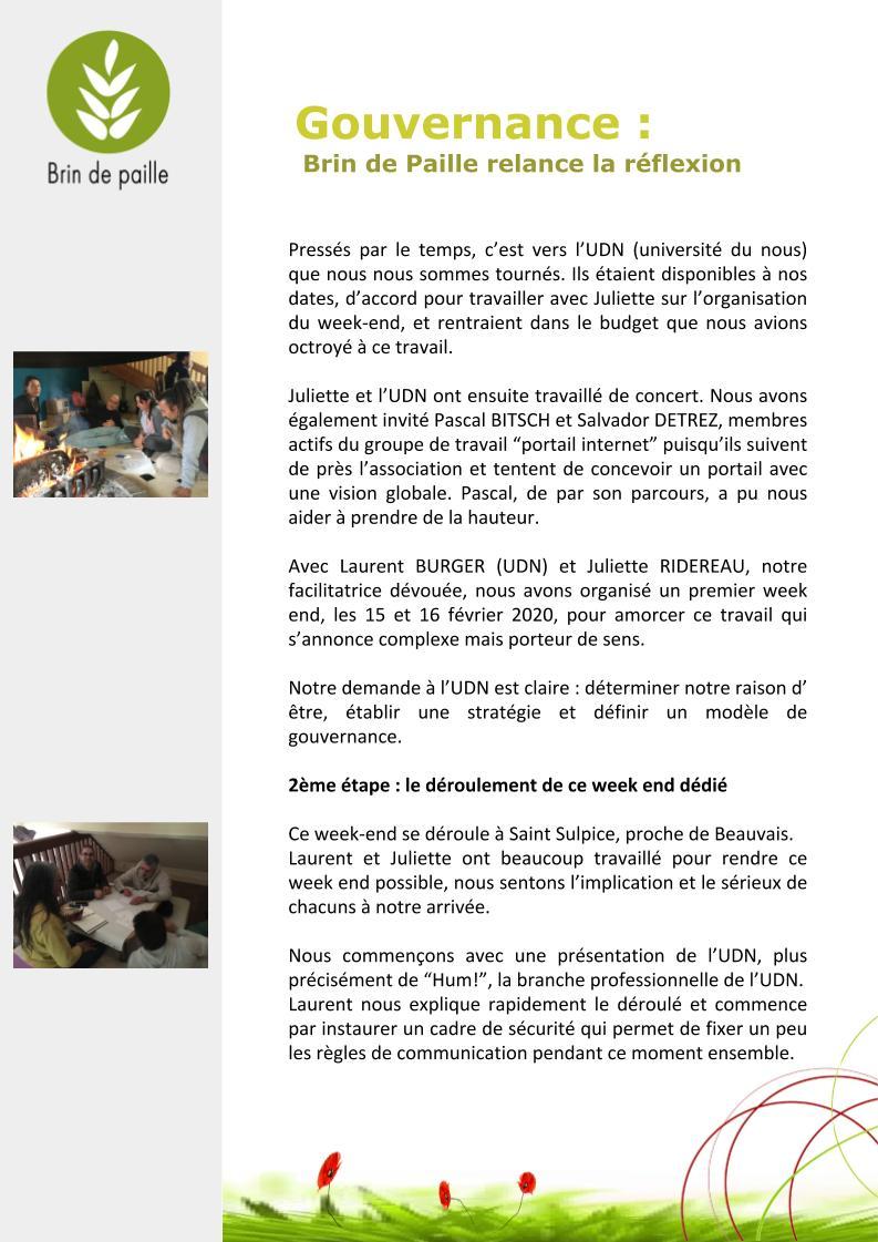Article gouvernance Brin de Paille(1)