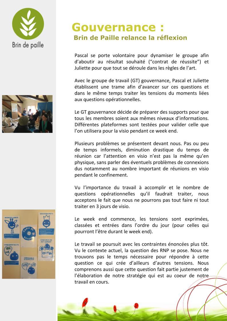 Article gouvernance Brin de Paille(3)