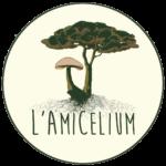 LOGO FINAL AMicelium