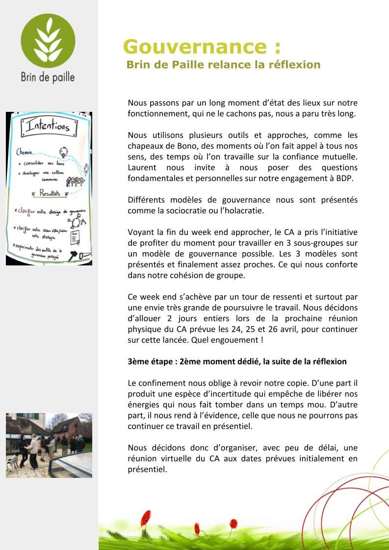 Article gouvernance Brin de Paille(2)